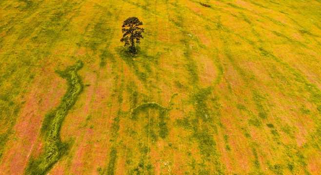 空旷草原自然风光图片