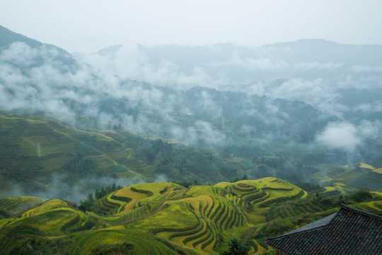 广西桂林龙脊梯田景致图片