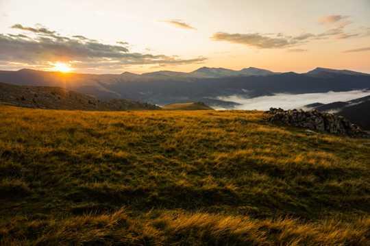 早晨草场自然风光图片