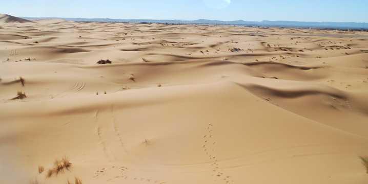 广袤的沙漠景色图片