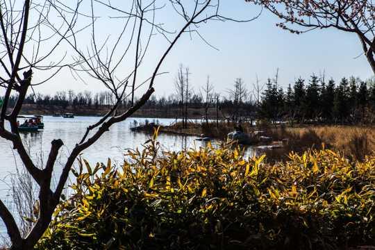 北京南海子公园风光图片