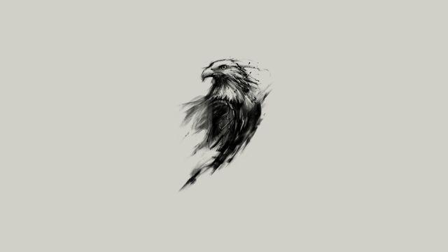 老鹰的水墨画图片