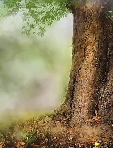 高清手绘树林