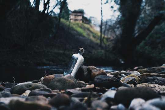 丛林河边的石头图片