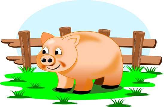 乖巧卡通小猪图片