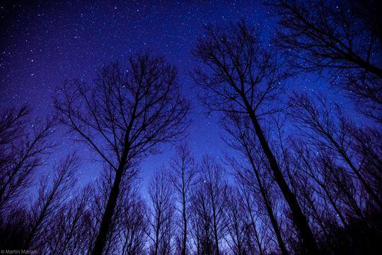 漂亮的夜空图片