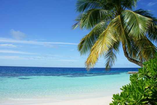 风光宜人的沙滩自然风光图片
