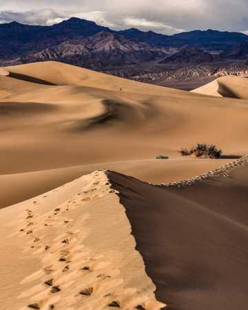 荒芜大漠景色图片