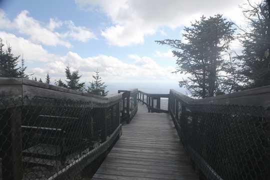 蓝天云层木栈道图片