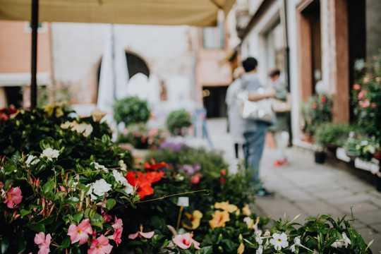 意大利的花店图片