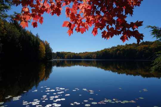 秋天江河景观图片